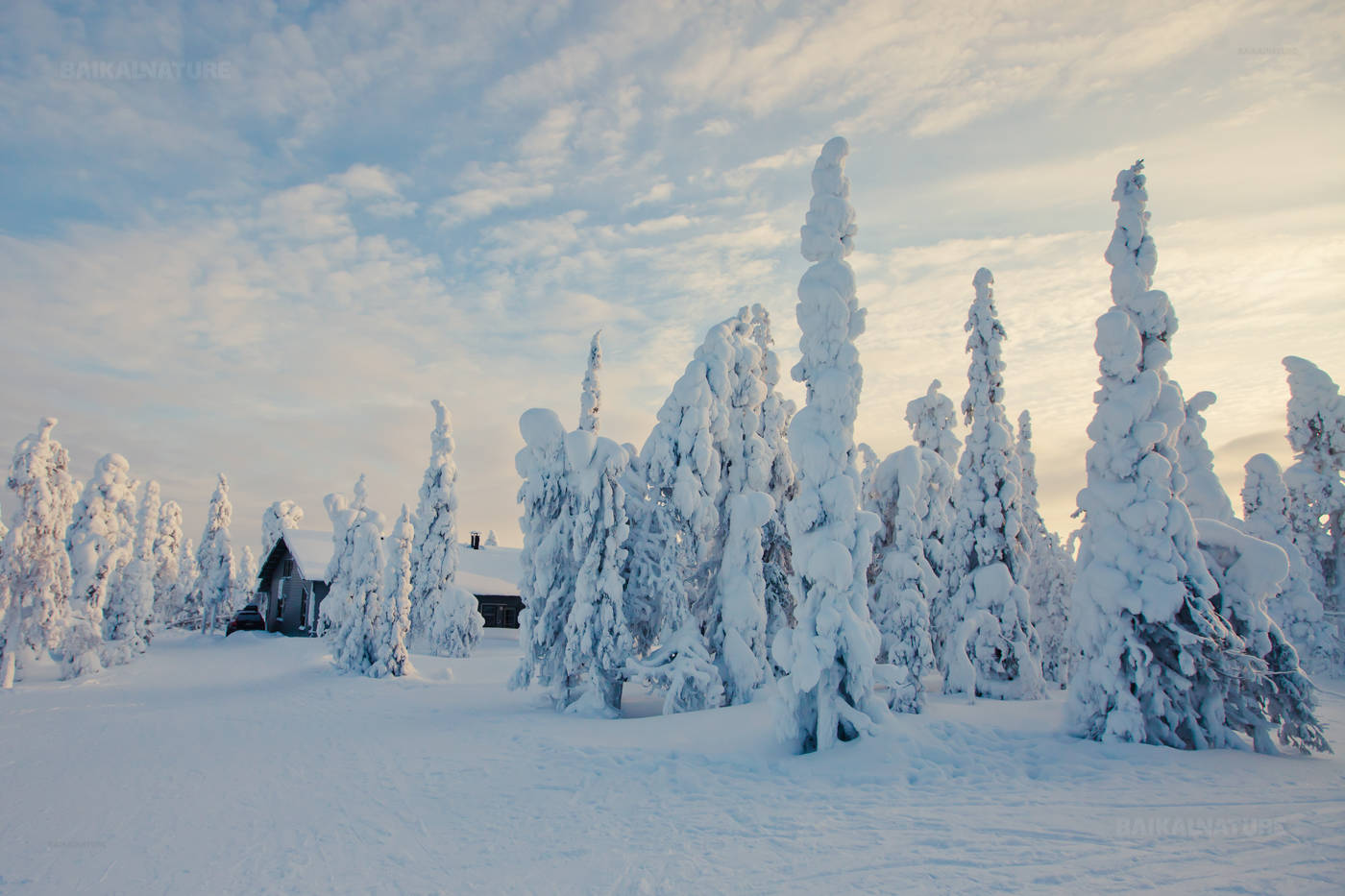 New Year 2019 in Karelia 76