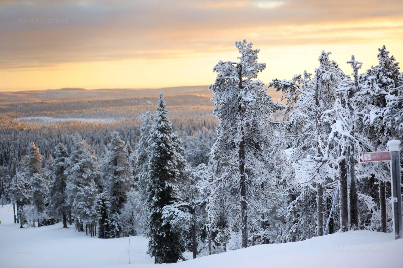 New Year 2019 in Karelia 7