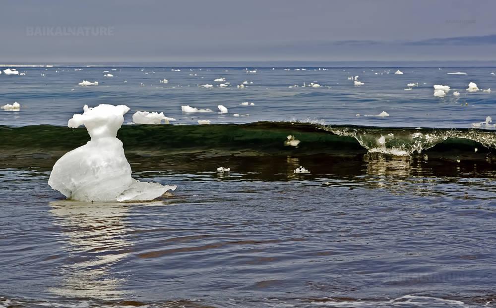 Глыбы льда в море.