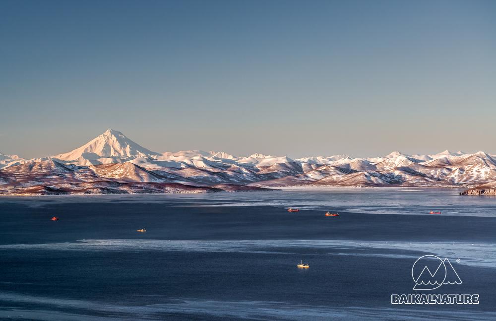 Красивый вид на вулкан Вилючинский, бухты Крашенинникова, Авачинскую бухту на рассвете. Камчатка.